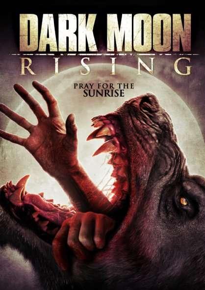 ������� ����Dark Rising BluRay